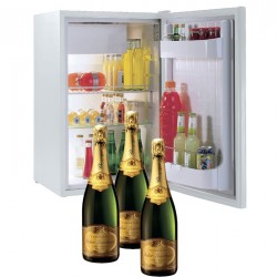 FRIDGE WITH GARNISH With kit Champagne