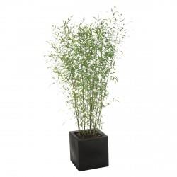 Planta BAMBUES 180/200
