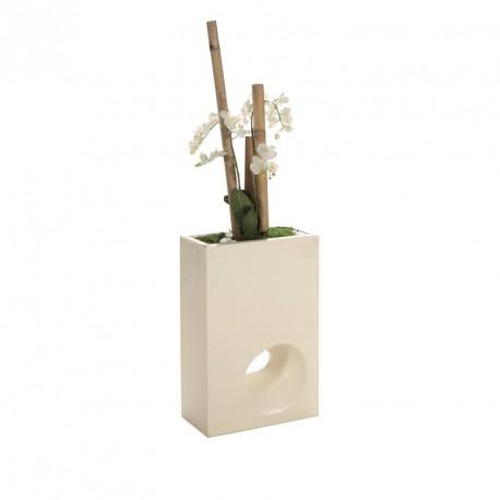 SEPARATION FLEURIE Orchidée