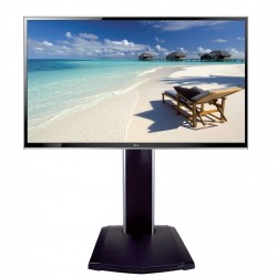 SCREEN 55'' HDMI + ADJUSTABLE BASE